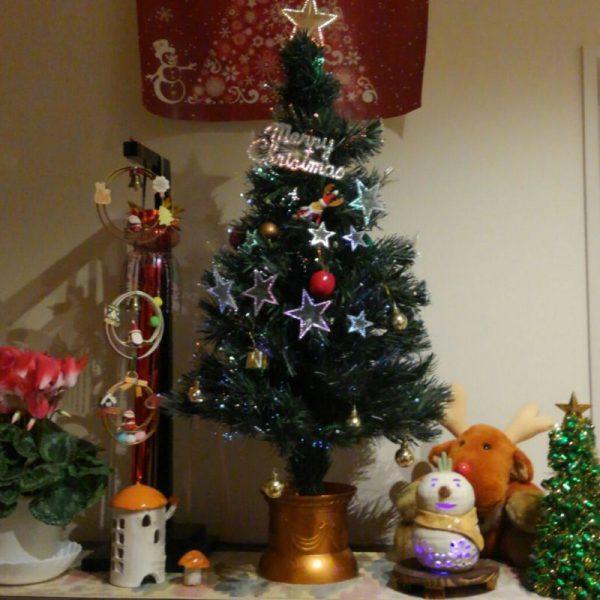 会員様ご自宅のクリスマスディスプレイ